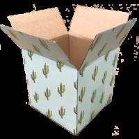 Box_cactus_5x5x5_box
